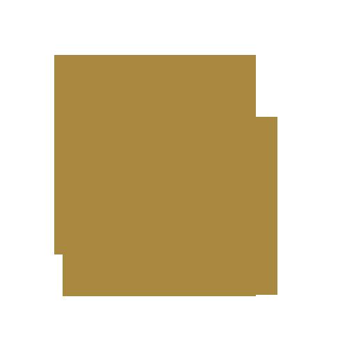 Checklisten Kampfsportversicherungen