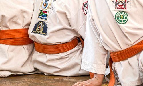 Versicherungsschutz für Kampfsportler 1