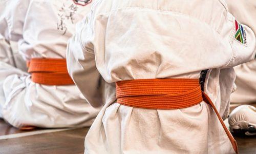 Kampfkunst im Verein